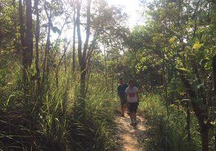 Trekking to Doi Suthep Mt. through A Natural Trail
