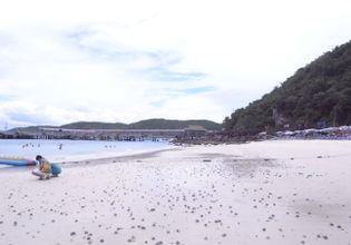 koh Larn (coral island)