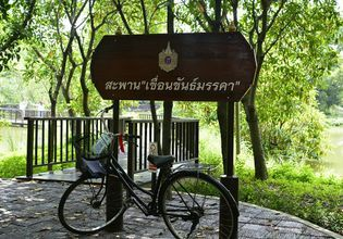 Bike Tour of Bangkok's Green Lung : Bang Krachao