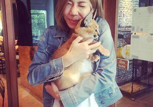 Cat Cafe Tour!