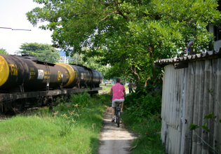 Cycling along the train graveyard