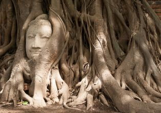 Ayutthaya temples and culture with original Thai cuisine.