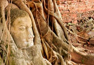 [Joined Tour] Ayutthaya Ancient City Tour & Bang Pa-In Summer Palace