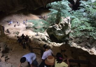Mangrove Ecosystem in Samroi Yot and Trekking to Phraya Nakorn Cave