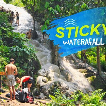 """[CNX102] Bua Tong """"Sticky"""" Waterfall Tour"""