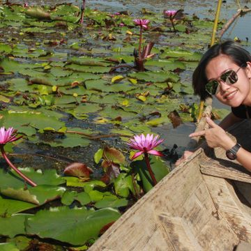 Visit Red Lotus Pond and Try Lotus Petal Snack