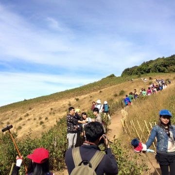 Kio Mae Pan Trek & Inthanon Mountain
