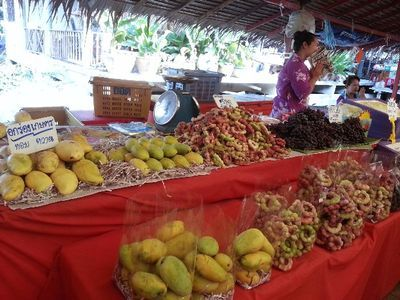 Cycling in Wonderful Park & Tasting Local Food at a Floating Market