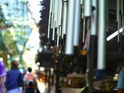 Bike Tour of Bangkok's Green Lung : Bang Krachao