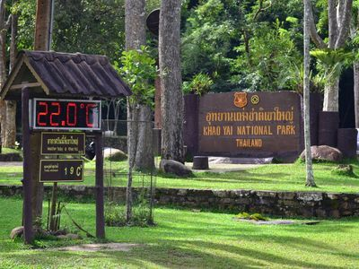 A Memorable Day Tour to Khao Yai National Park with An Expert
