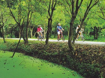 Samutprakarn Day Tour Package - Floating Market, Cycling, Seafood All in One Day
