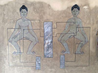 Traditional Medicine Trip