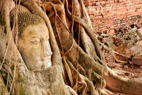 Explore Ayutthaya in 1-Day