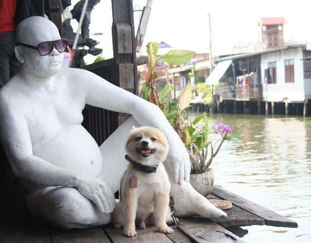 Thai Fun: Taling Chan Floating Market with My Four-Legged Friend!