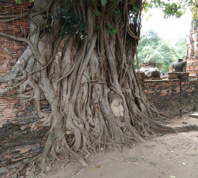Historic Park of Ayutthaya Tour & Floating market  ( Day trip from Bangkok)