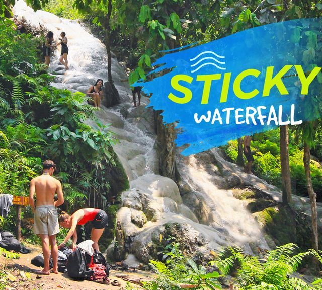 "Explore The Bua Tong ""Sticky"" Waterfall With a Local Expert"