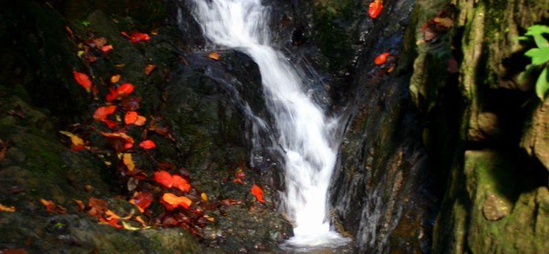 Ton Sai waterfall, local museum, gilded Buddha and evening market.